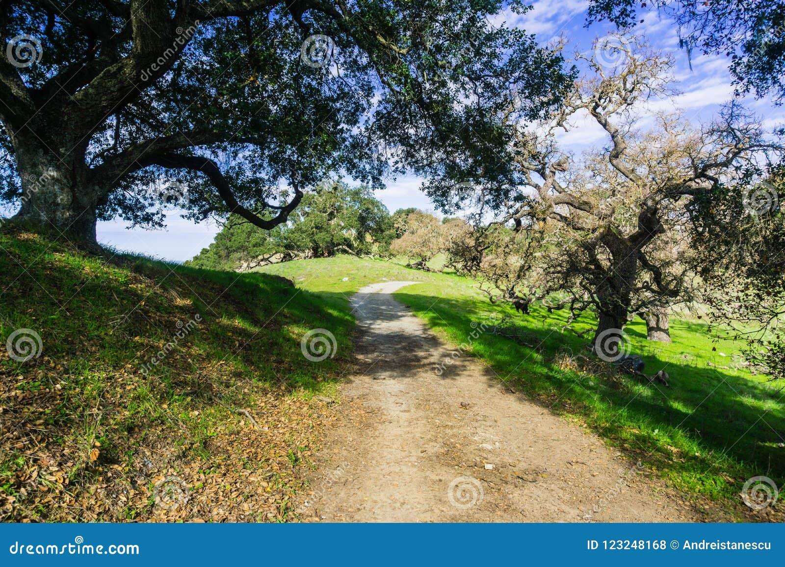 Wanderweg durch die Hügel und die Täler von Coyote See Harvey Bear Ranch County Park