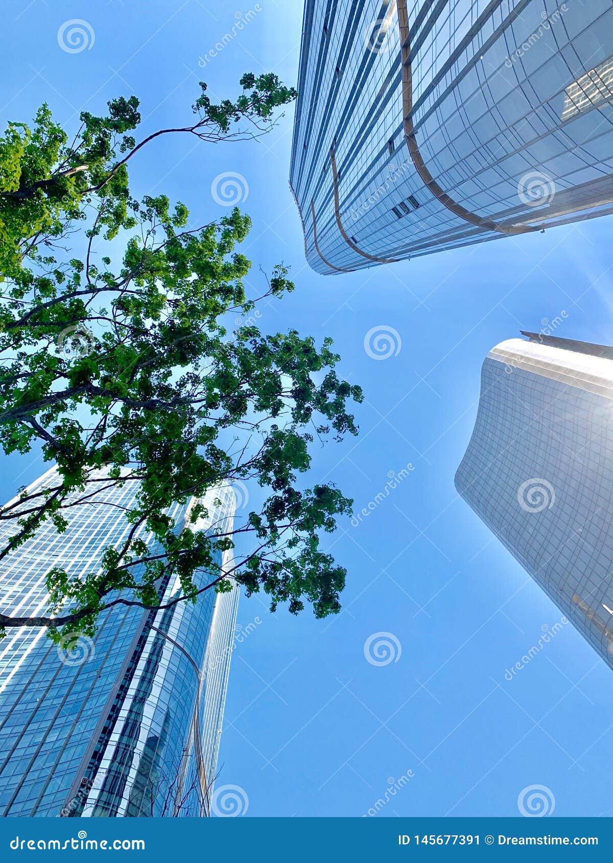 Wangjing, Пекин, Китай, высокое здание,