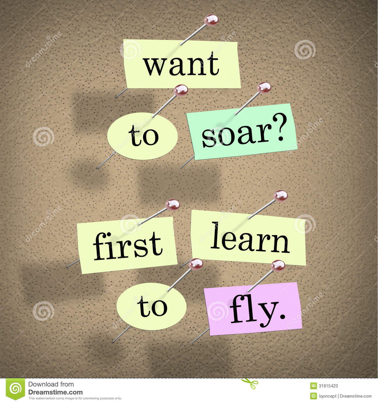learn how to fly a droon