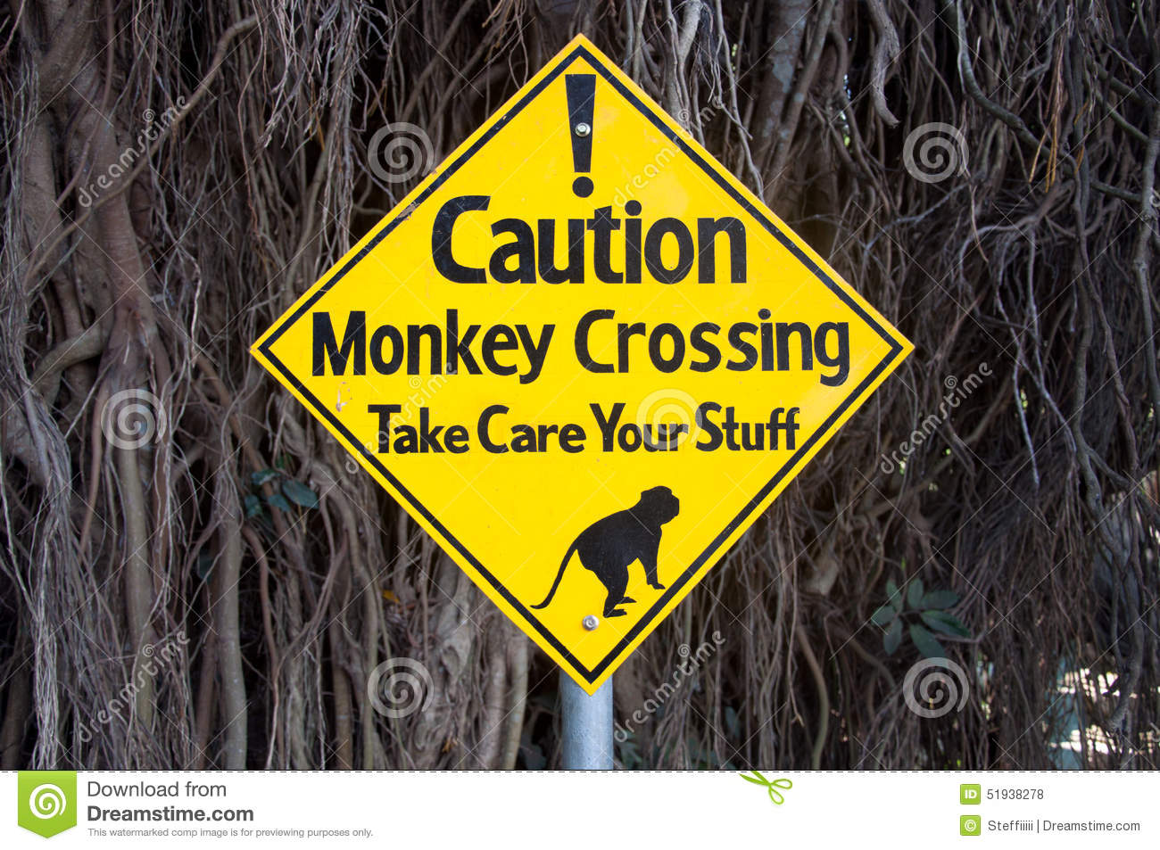 Warning Sign - Monkeys Crossing The Road And Taking Care ...
