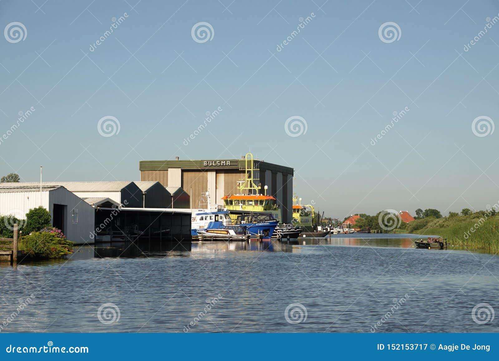 Wartenster wiid w Friesland w holandiach