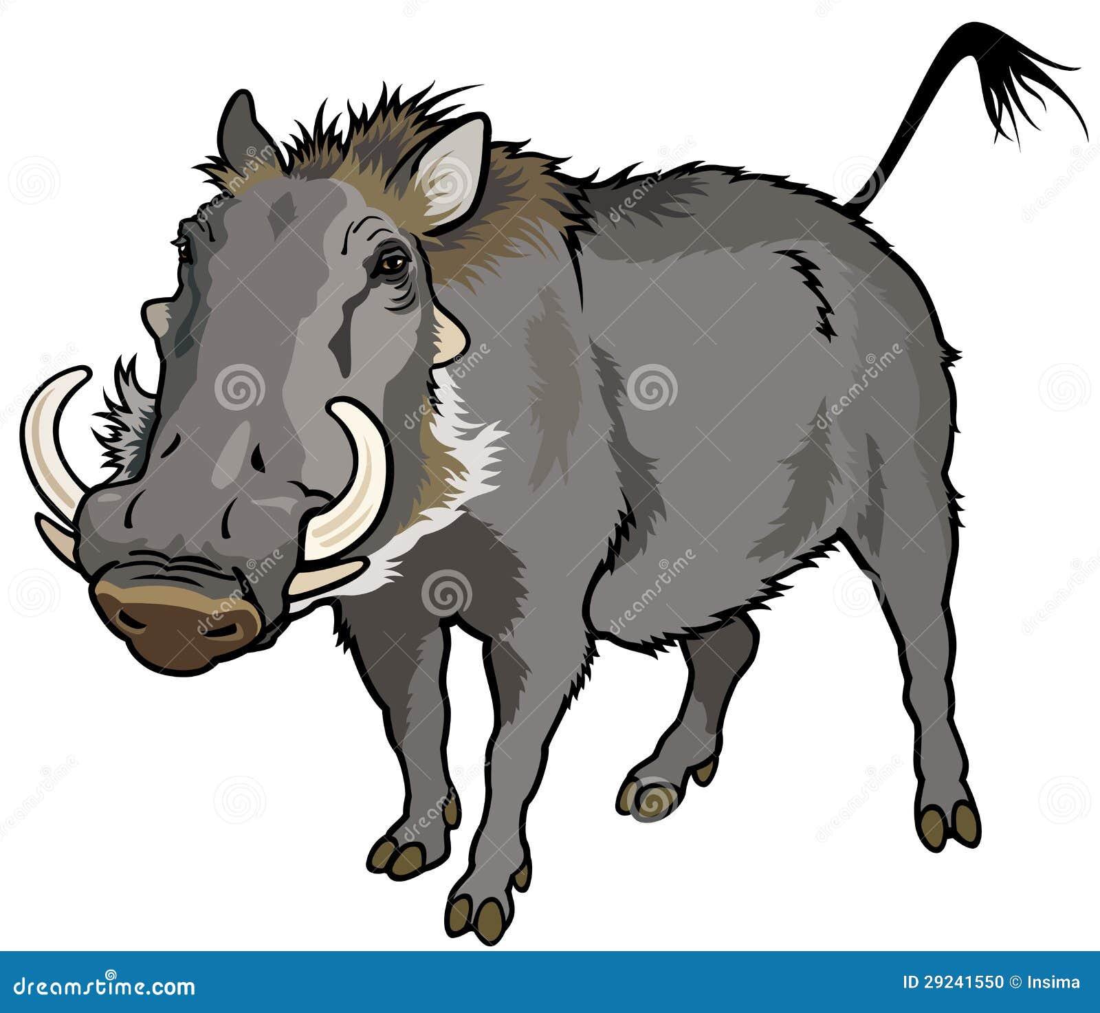 Download Warthog ilustração do vetor. Ilustração de fundo, besta - 29241550