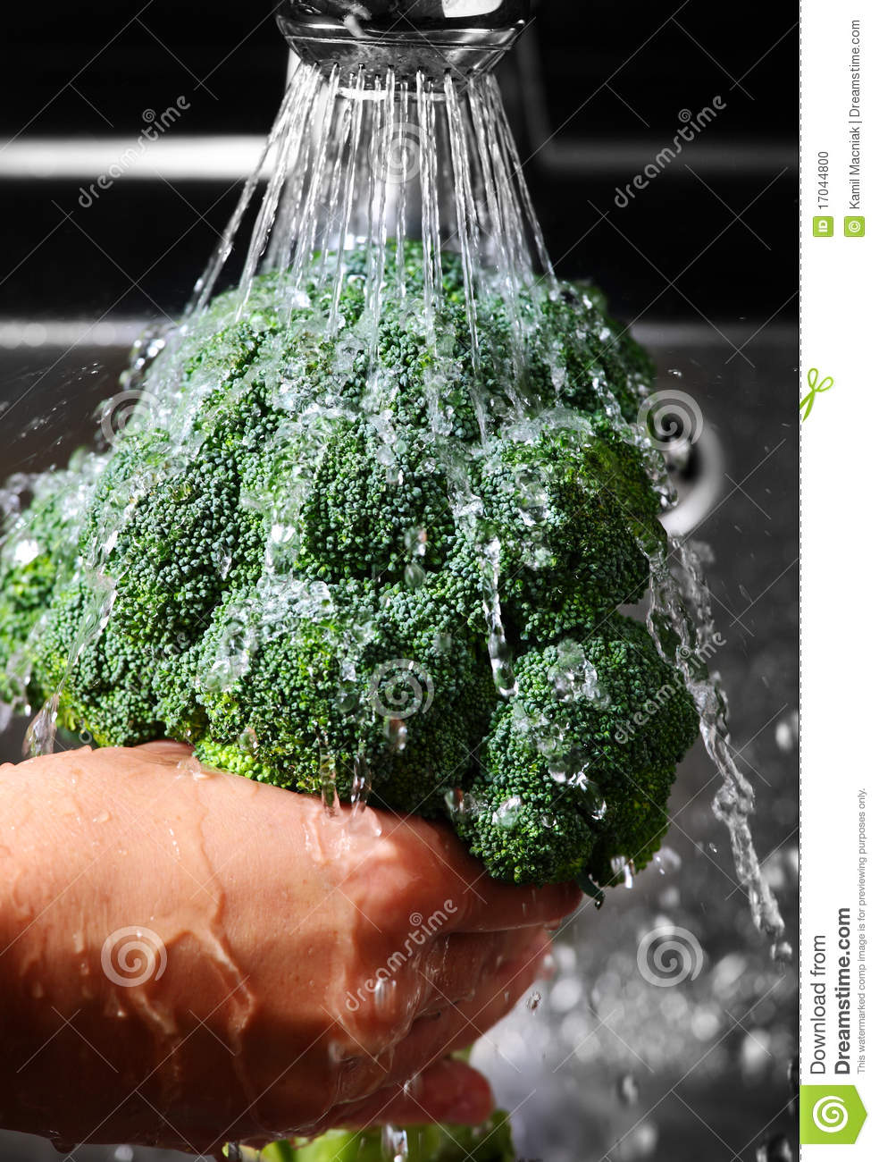 Washing Broccoli Stock Photo Image Of Freshness Broccoli
