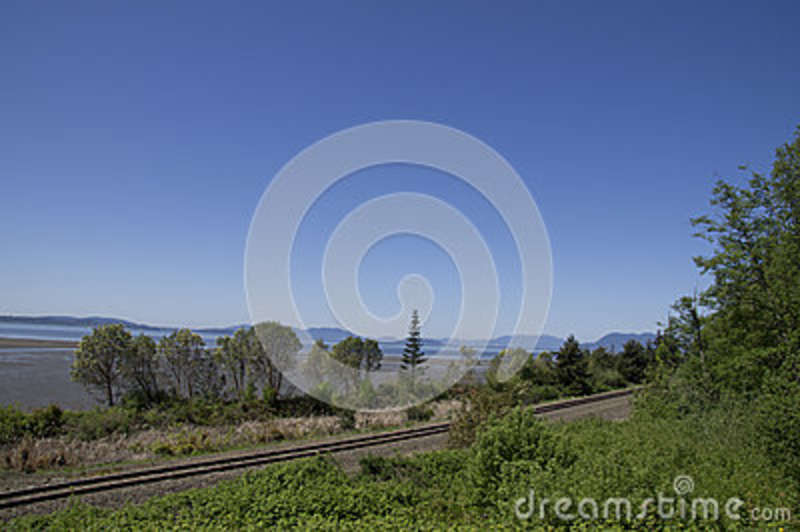 Washington Coastline Railroad Tracks