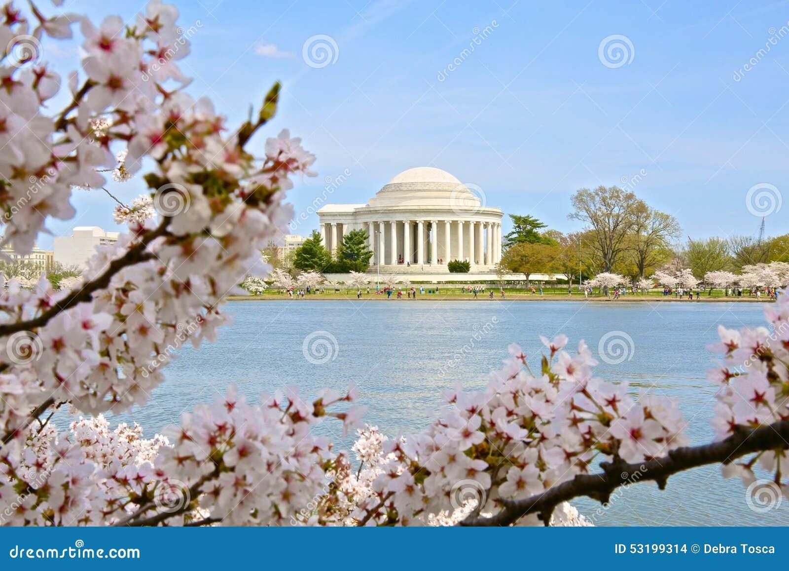 Washington DC de bassin de marée