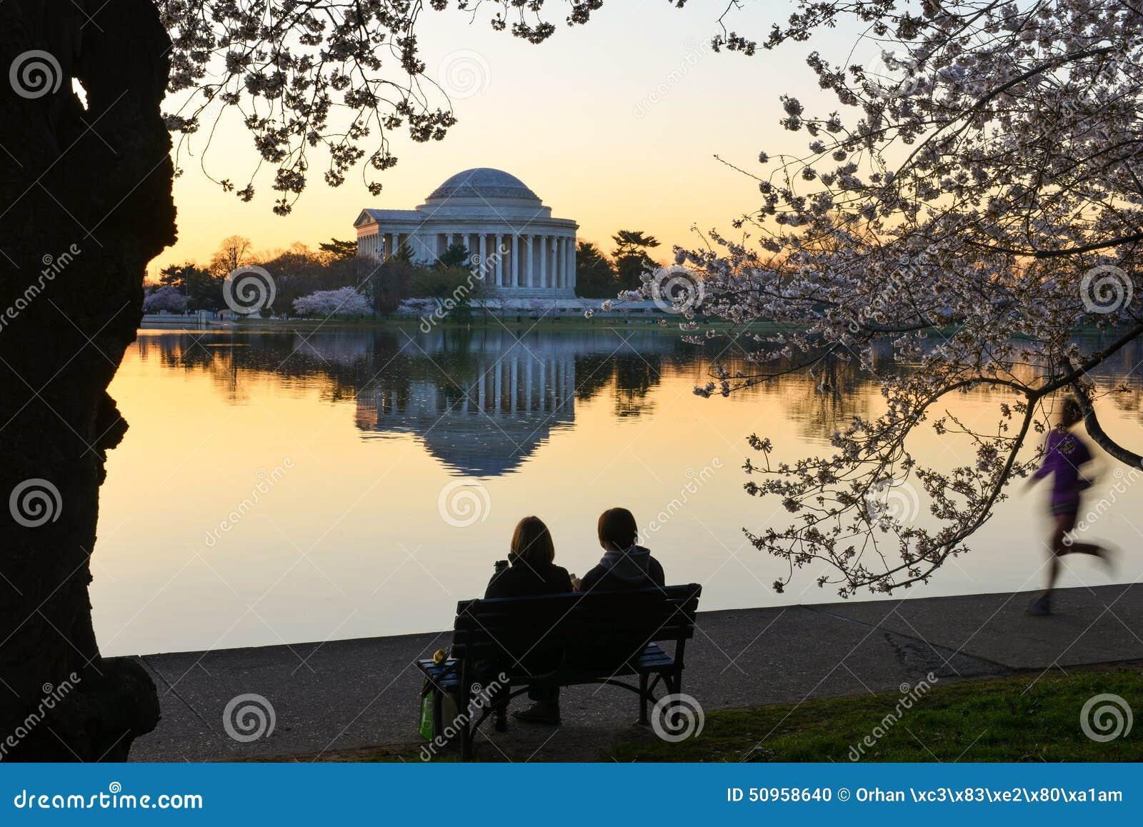 Washington DC, Jefferson pomnik w wiośnie