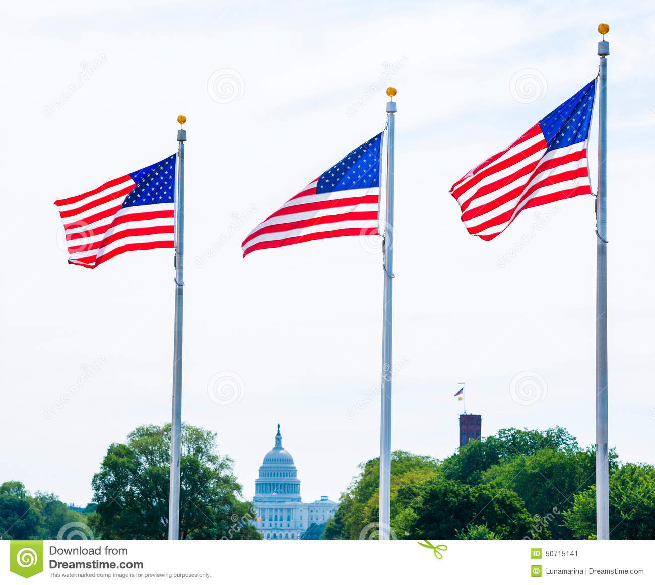 Washington Monument flags and Capitol DC USA