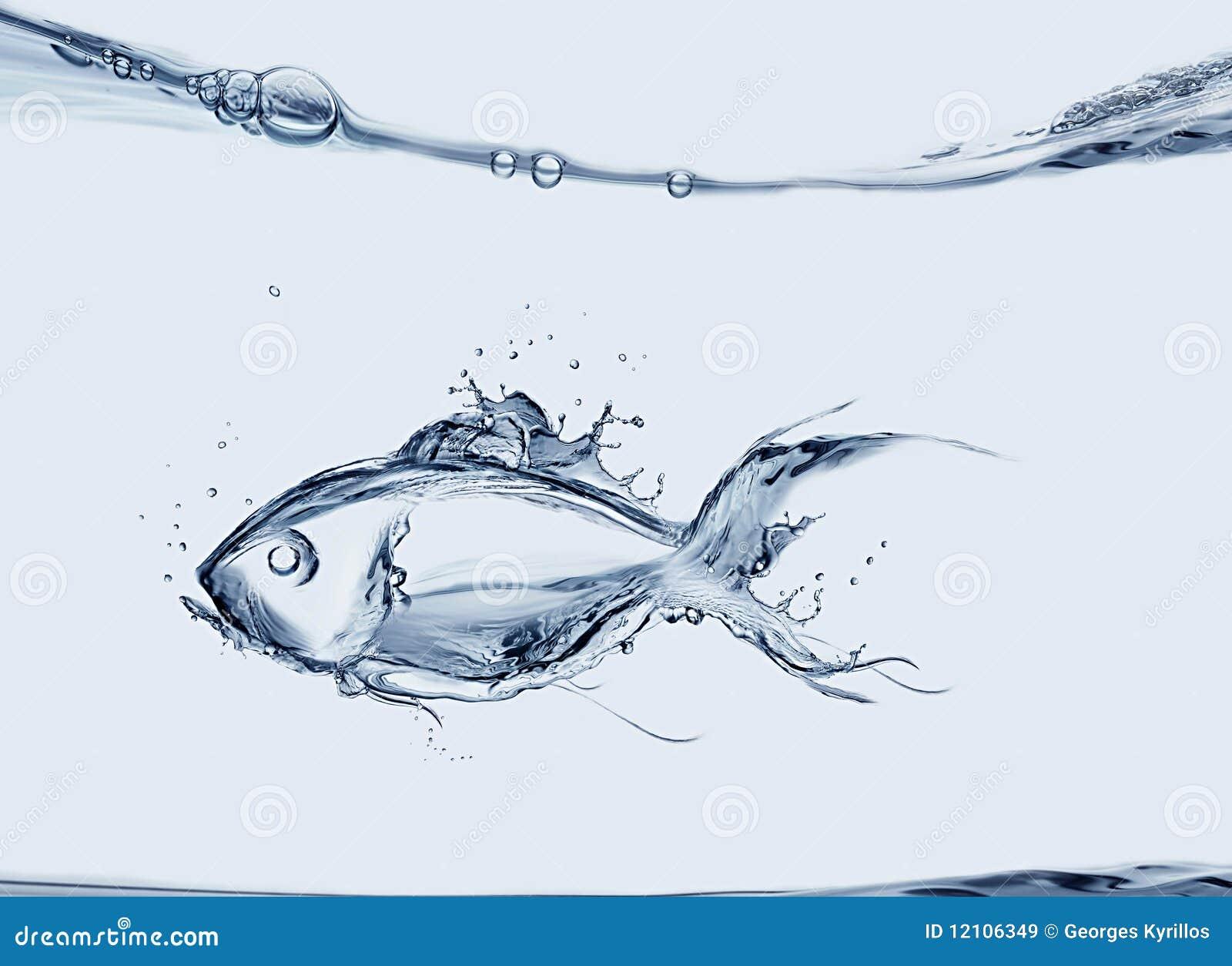 Wasser-Fische