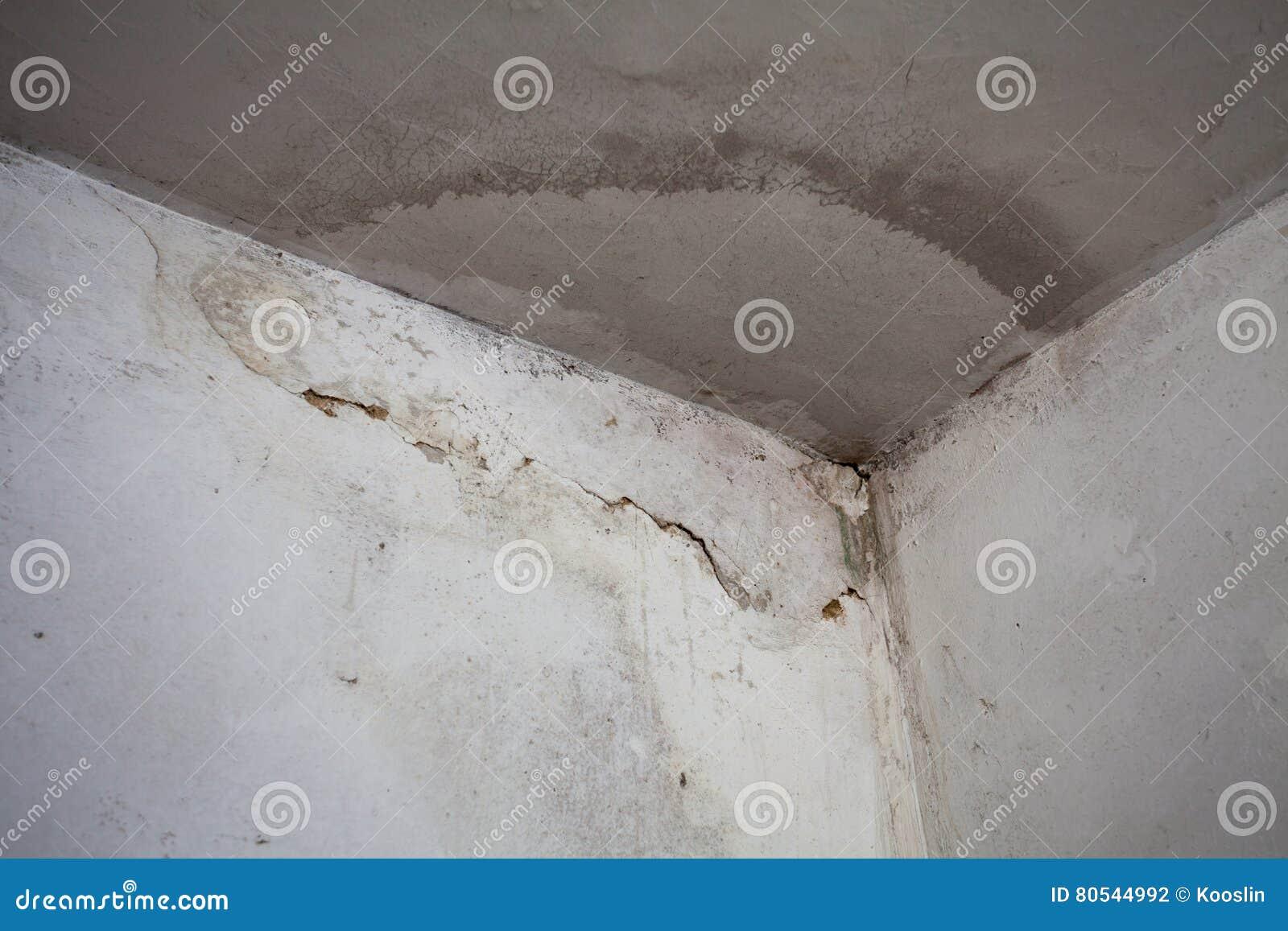 Wasser Geschädigte Decke Und Wand Stockfoto - Bild von wohnung, haus ...