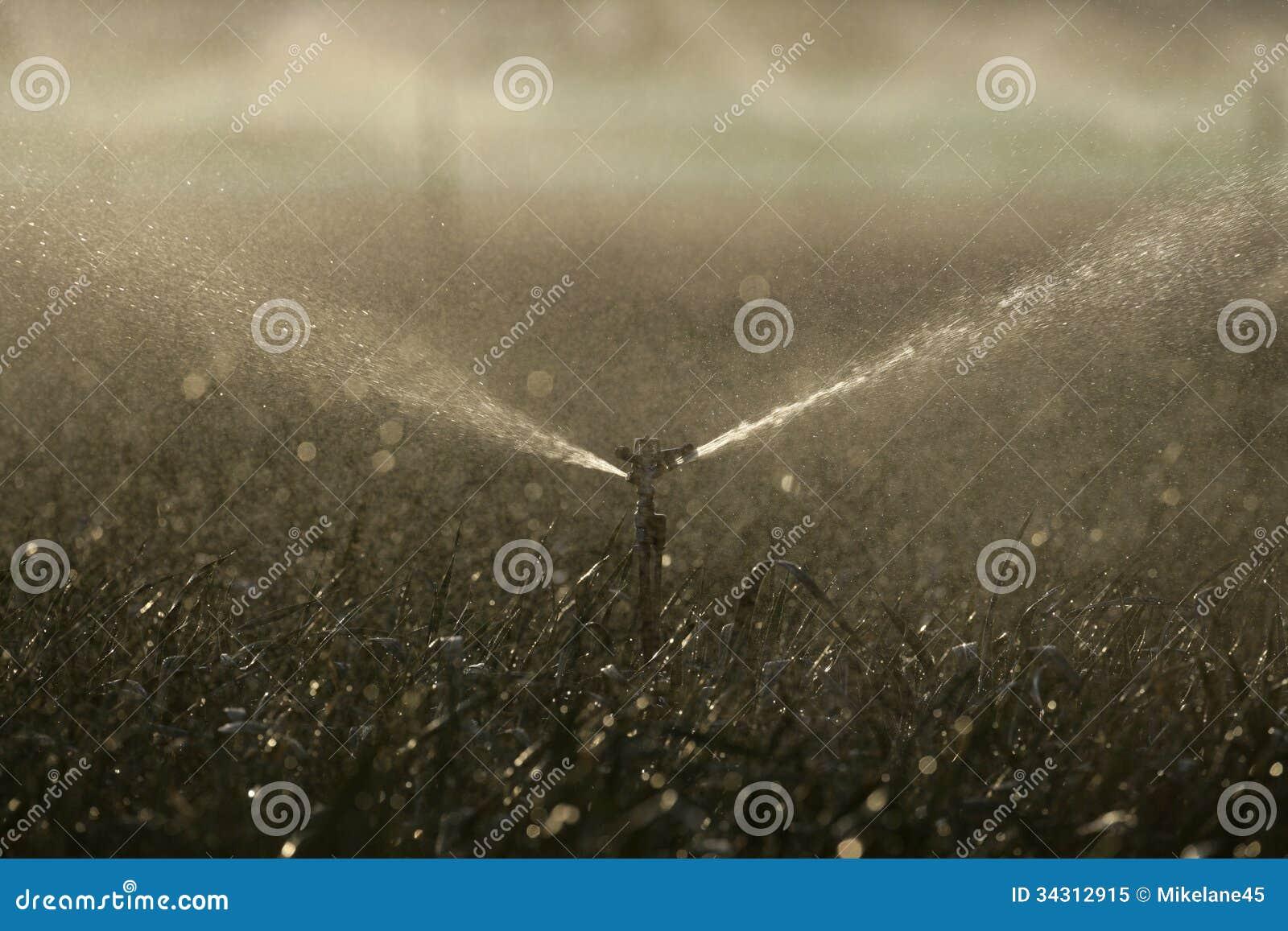Wasserberieselungsanlagen auf Ernten