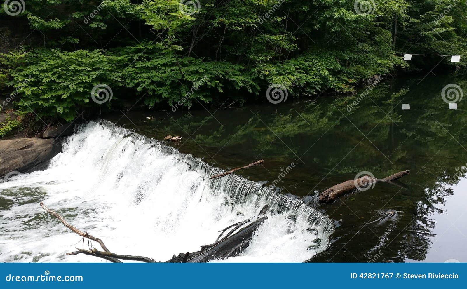 Wasserfall im Bronx