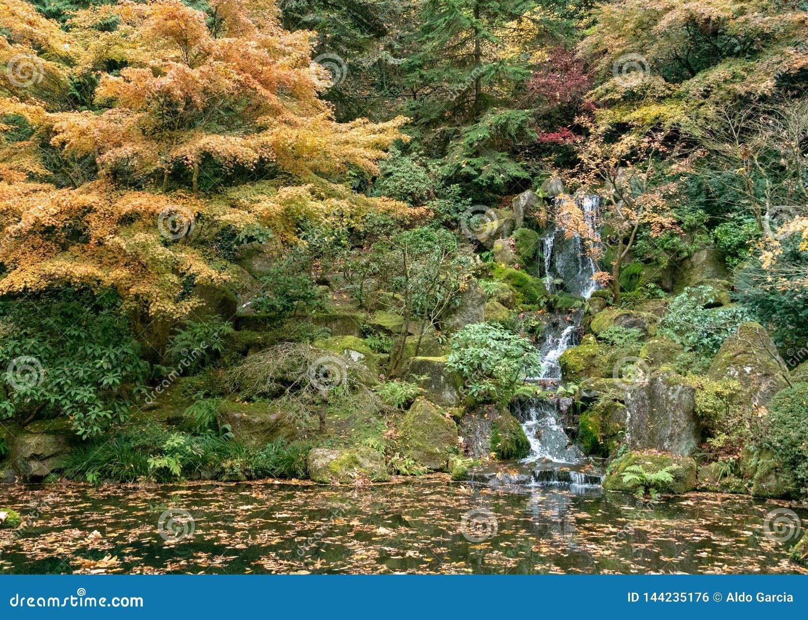 Wasserfall innerhalb des japanischen Tee-Gartens