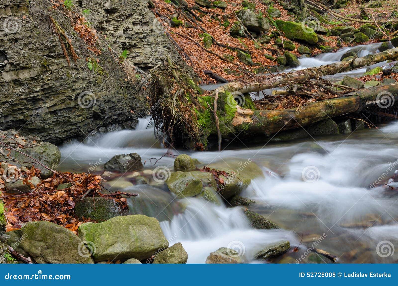 Wasserfall mit Stamm