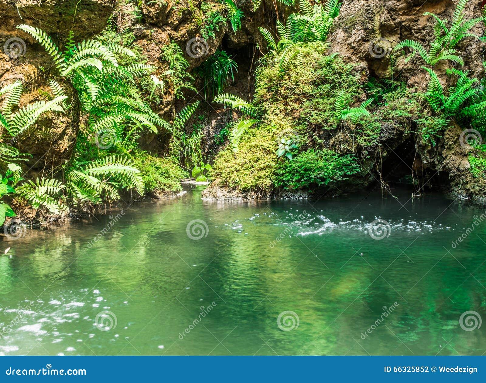 Wasserfall mit teich im garten stockfoto bild 66325852 - Wasserfall gartenteich ...