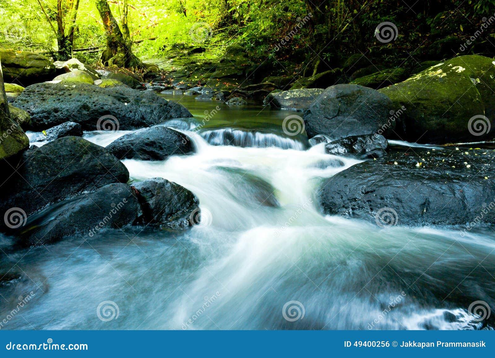 Download Wasserfall Mit Tiefgrünem Waldhintergrund Stockfoto - Bild von wasser, wasserlauf: 49400256