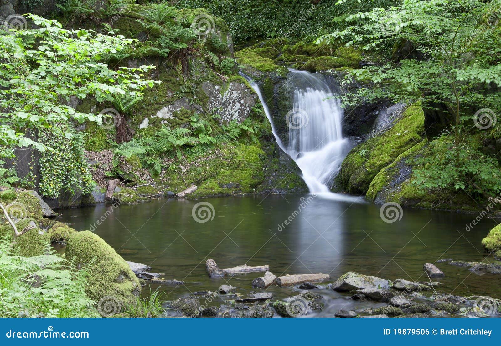 Wasserfall und pool stockfoto bild von wasserfall frech 19879506 - Pool wasserfall ...
