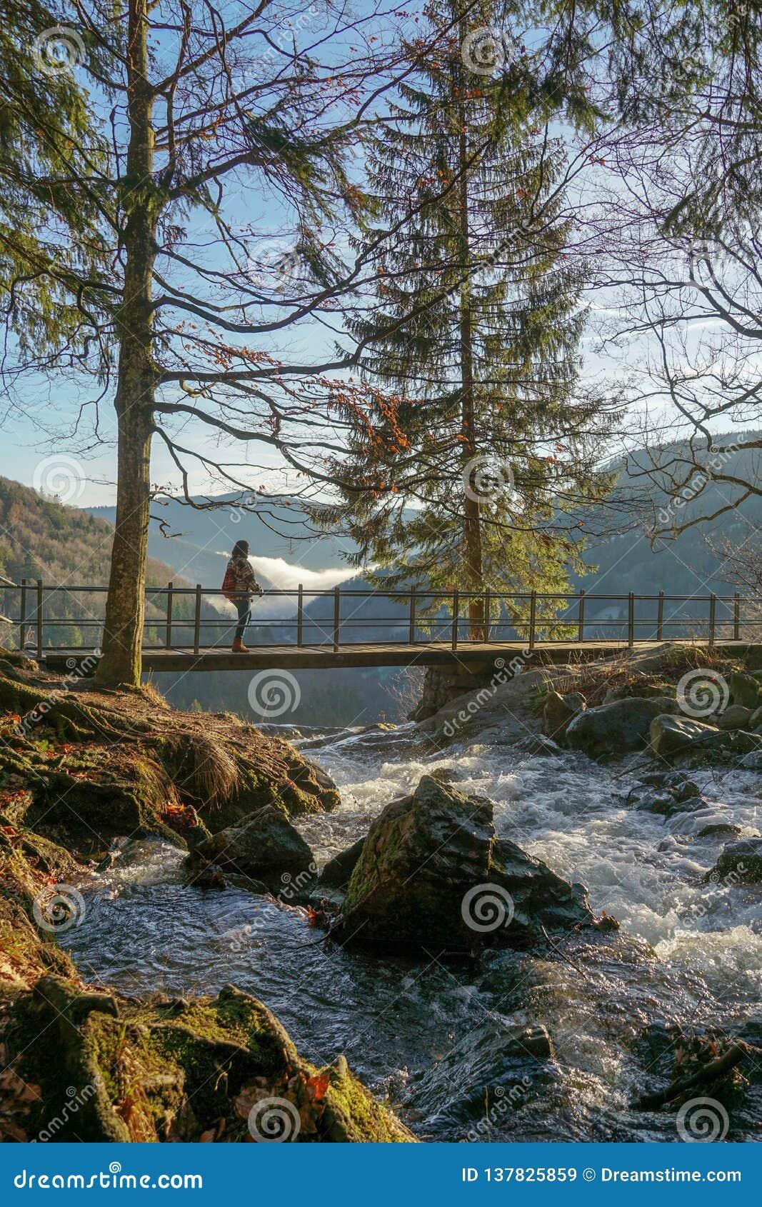 Wasserfalllandschaft auf die Oberseite mit Brückenbäumen und -c$wandern der menschlichen Frauenansicht in den Hintergrundnebel-La