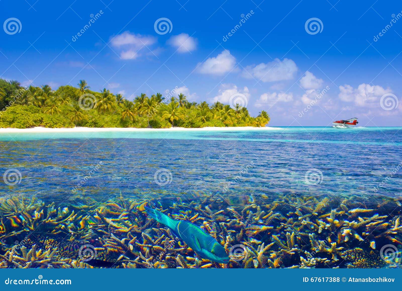 Wasserflugzeuglandung in den Malediven, Eden auf Erde