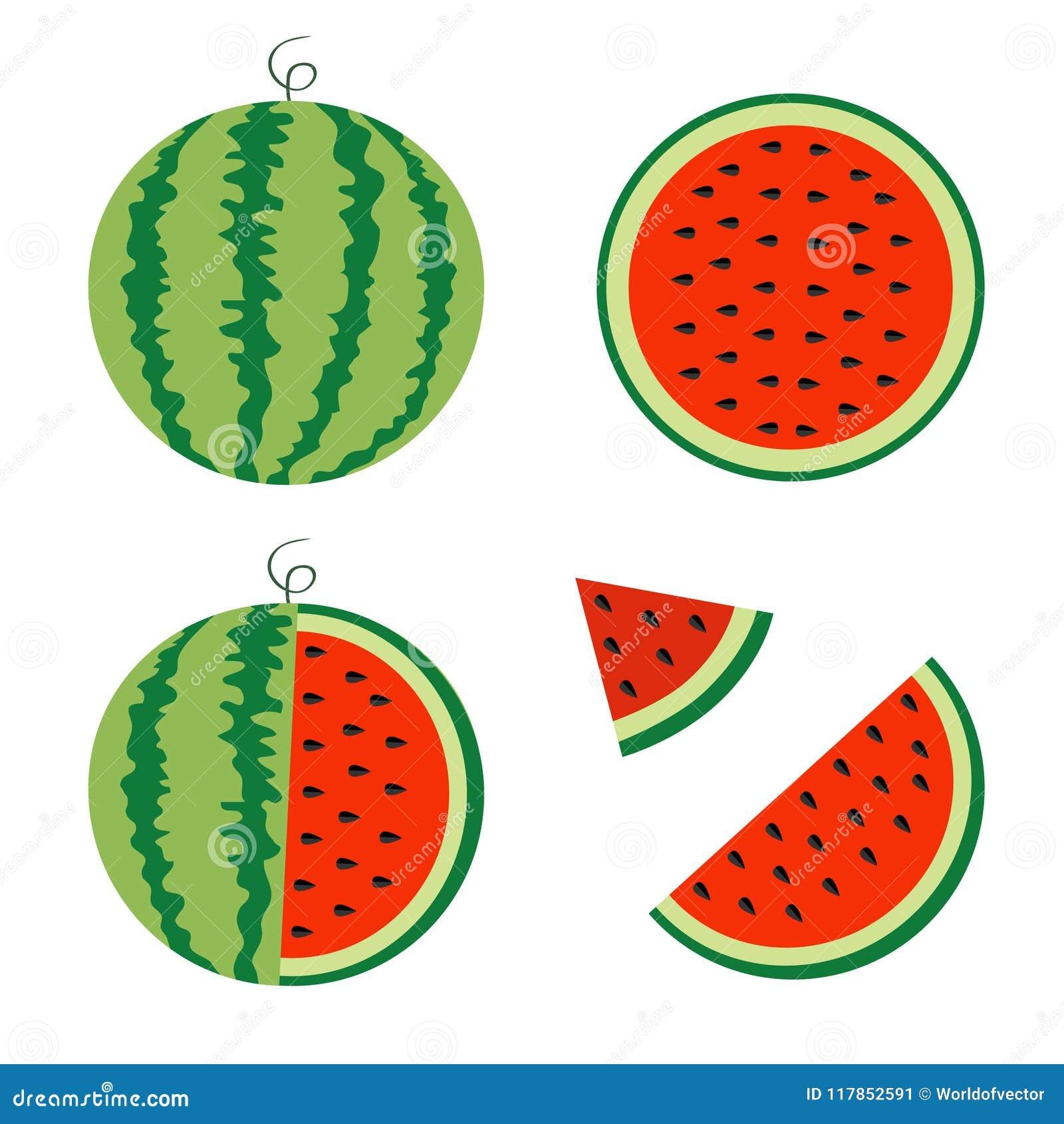 Wassermelonenikonensatz Ganzer reifer grüner Stamm Halbe Samen des Scheibenschnittes dreieck Grüne rote runde Fruchtbeeren-Fleisc