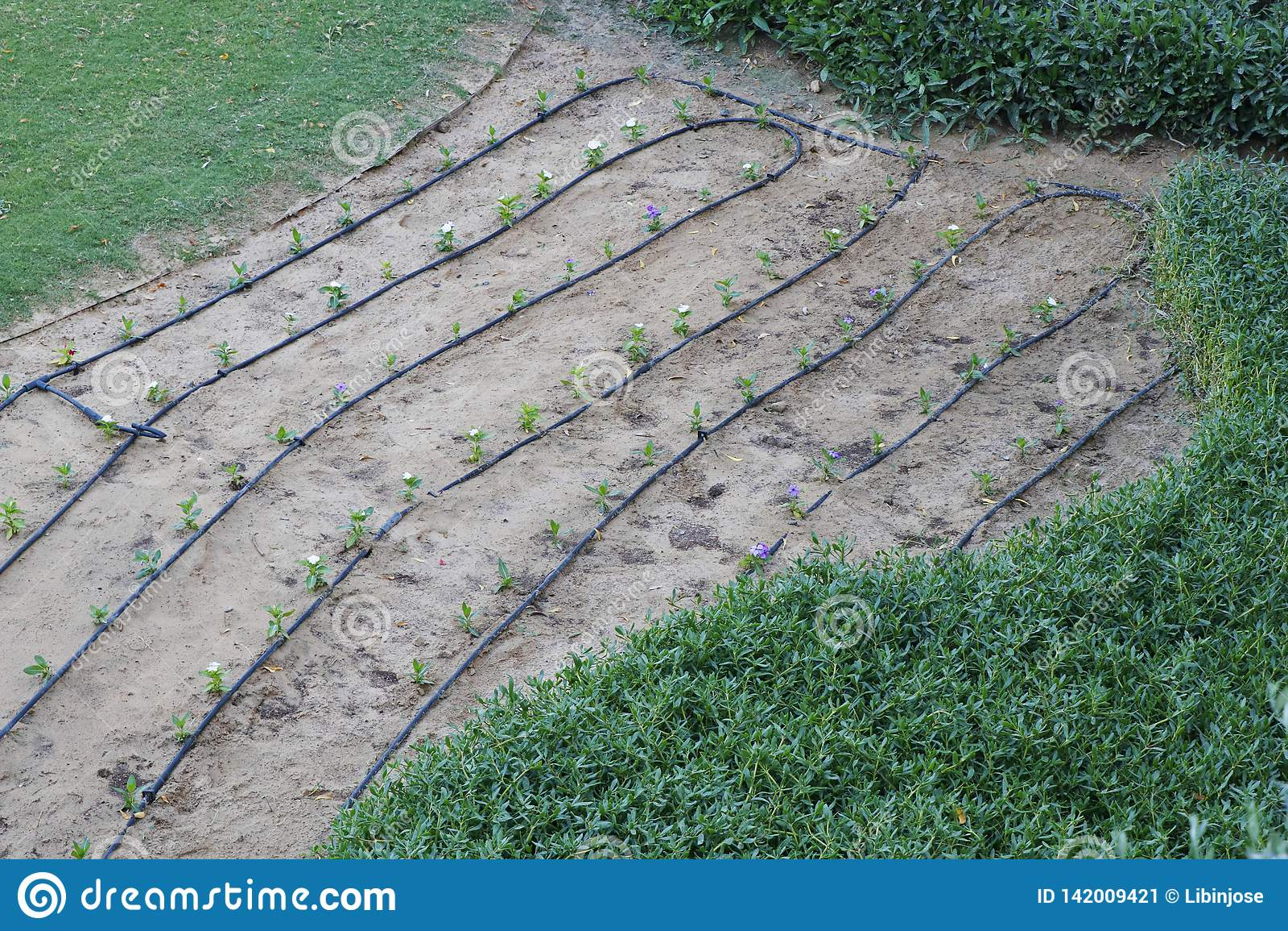 WasserSchlauchleitung für Garten und Feld