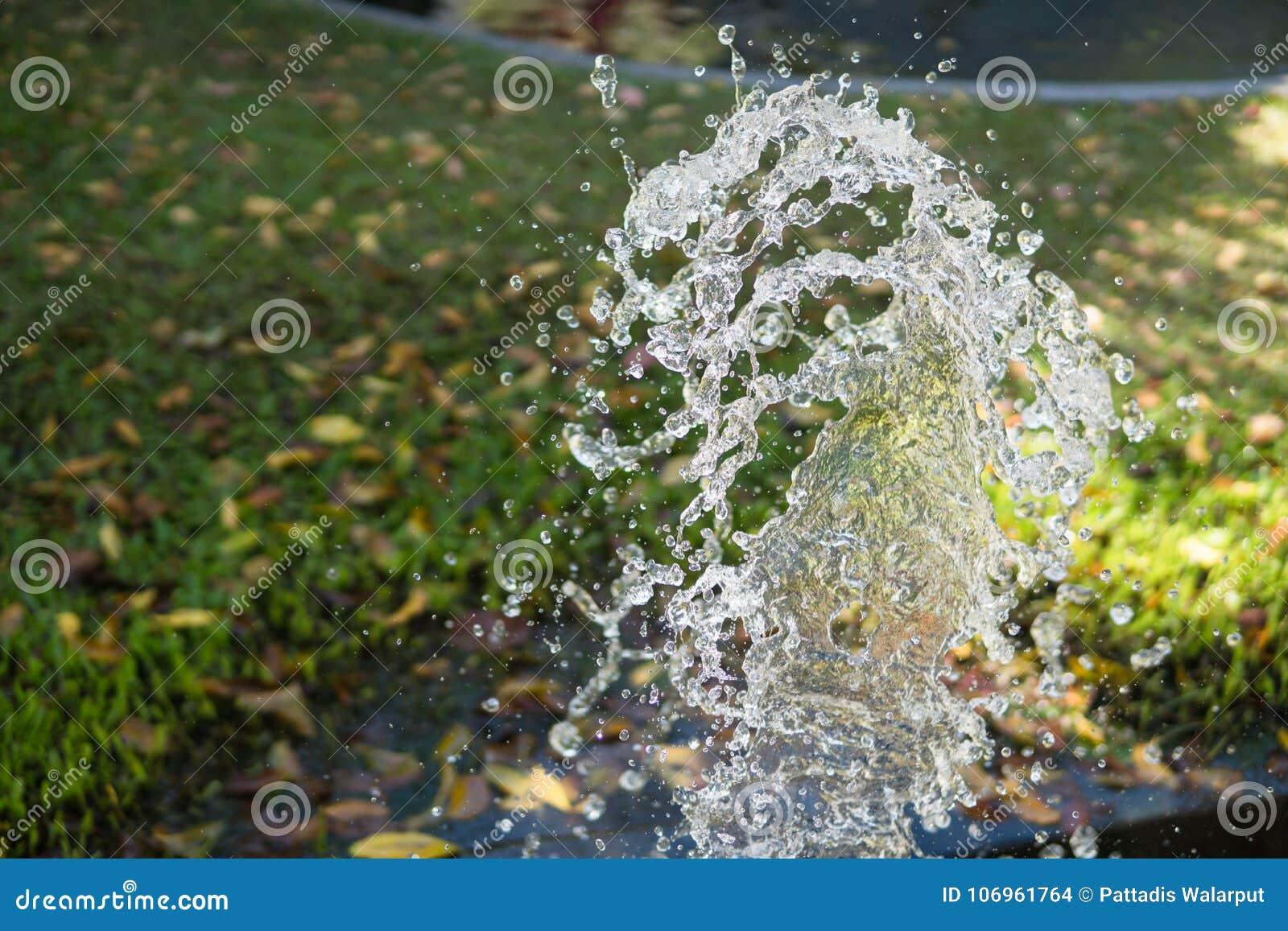 Wasserspritzen Im Rasen Am Hinterhof Stockfoto Bild Von