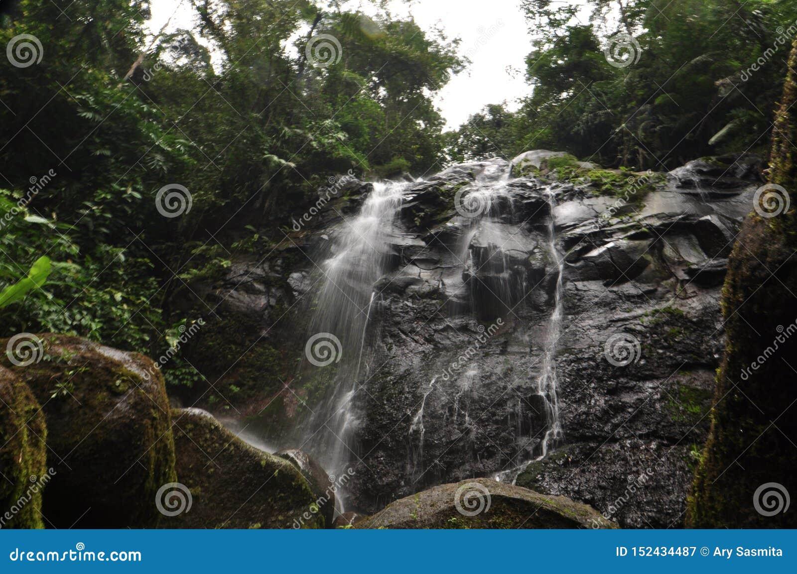 Wasserstromsenkrechte auf dem Felsen
