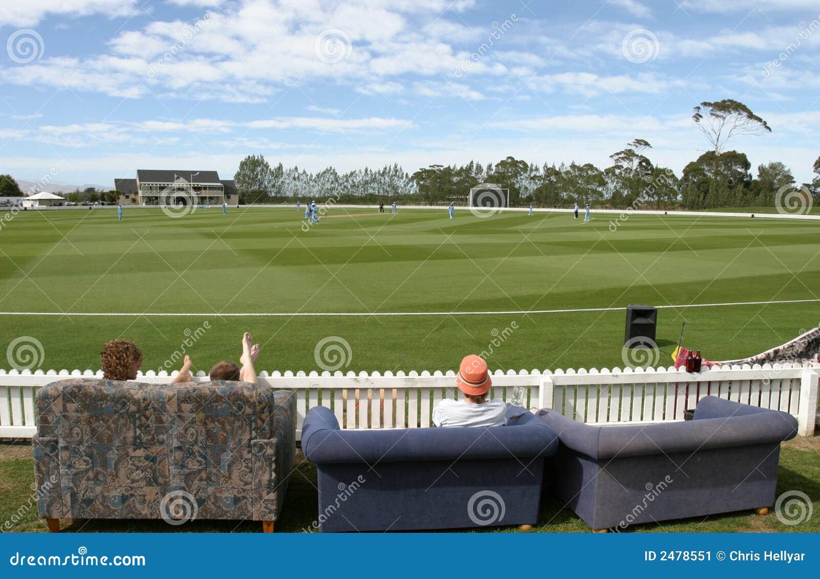 Watching a cricket match essay