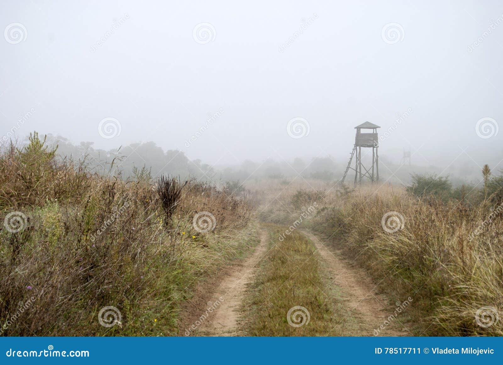 Watchtower in de mist