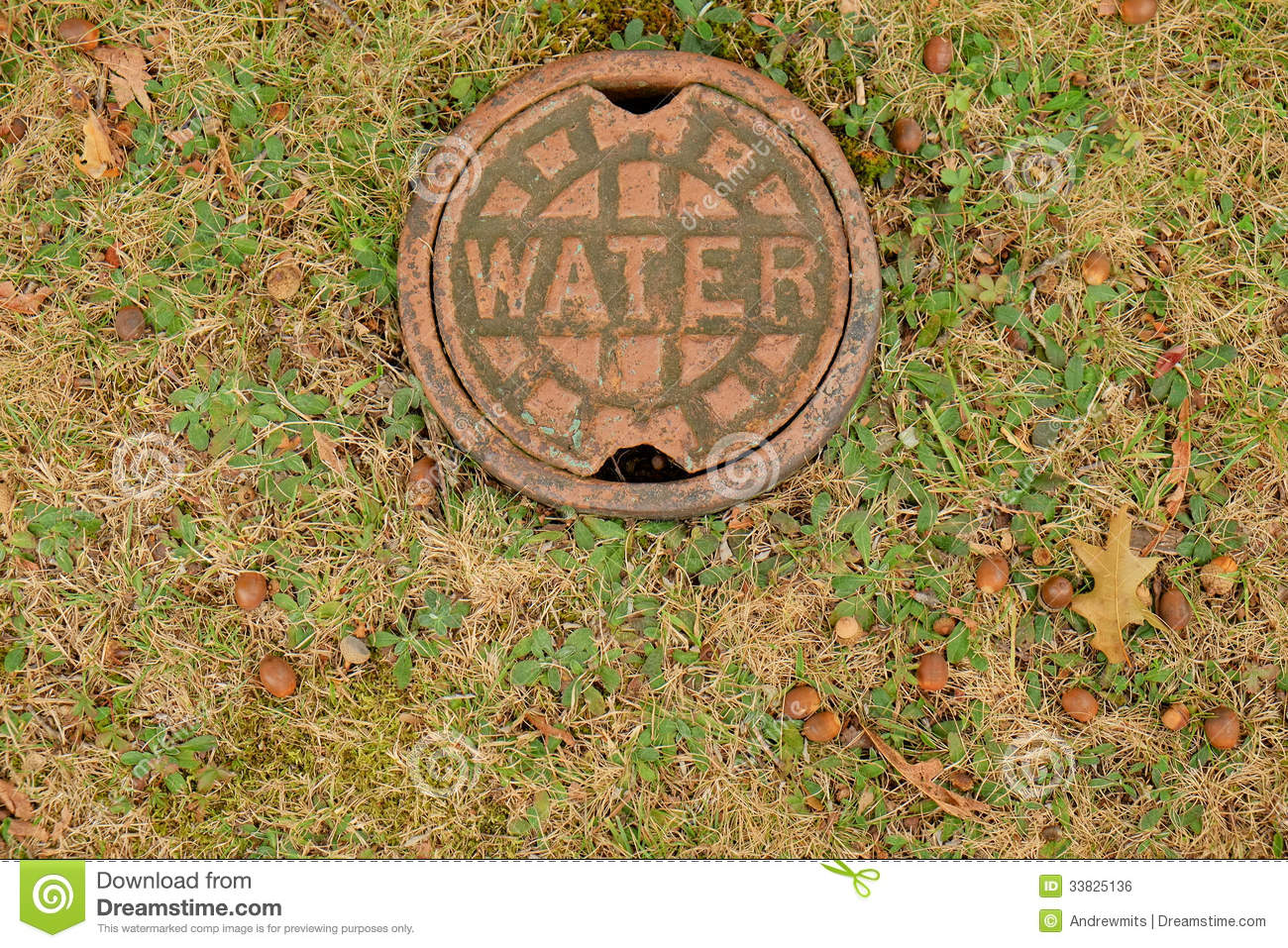Water access cap stock photo image of flush wellhead for Different types of water lines