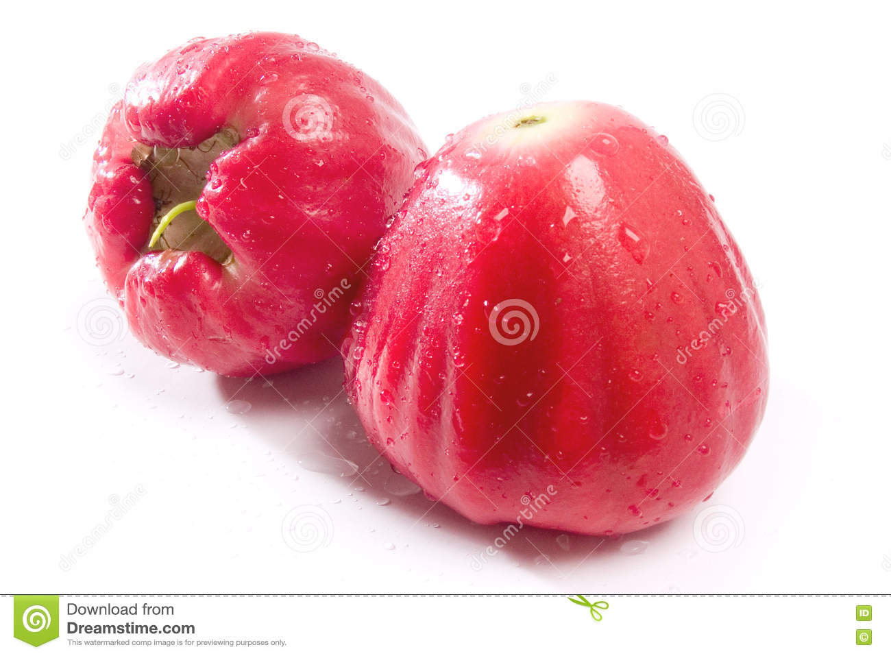 Water Apple 2 Stock Image Image Of Java Apple Jambu 73940213