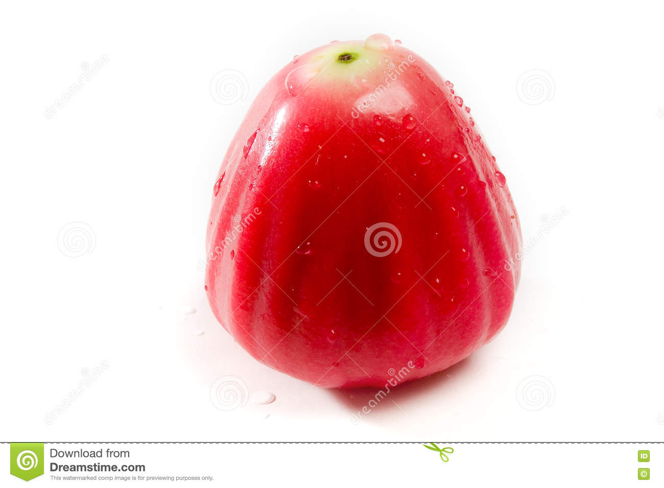 Water Apple 4 Stock Image Image Of Semarang Malay Samarangense 73940433