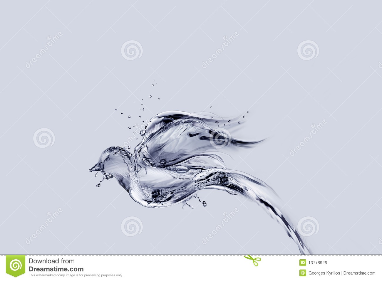 Water Bird Flying