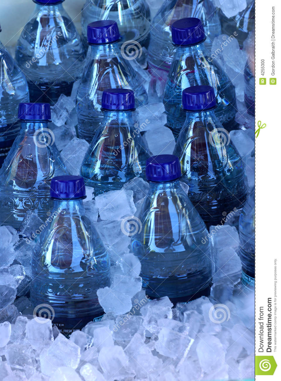 Water Bottles In Ice Stock Photo Image 4255300