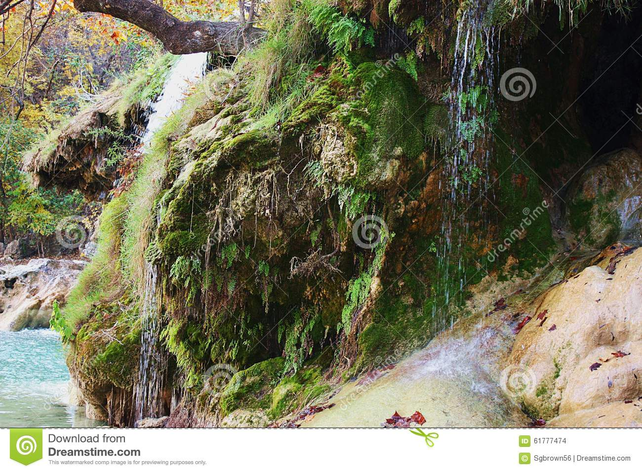 Water Cascading over Moss Covered Rocks