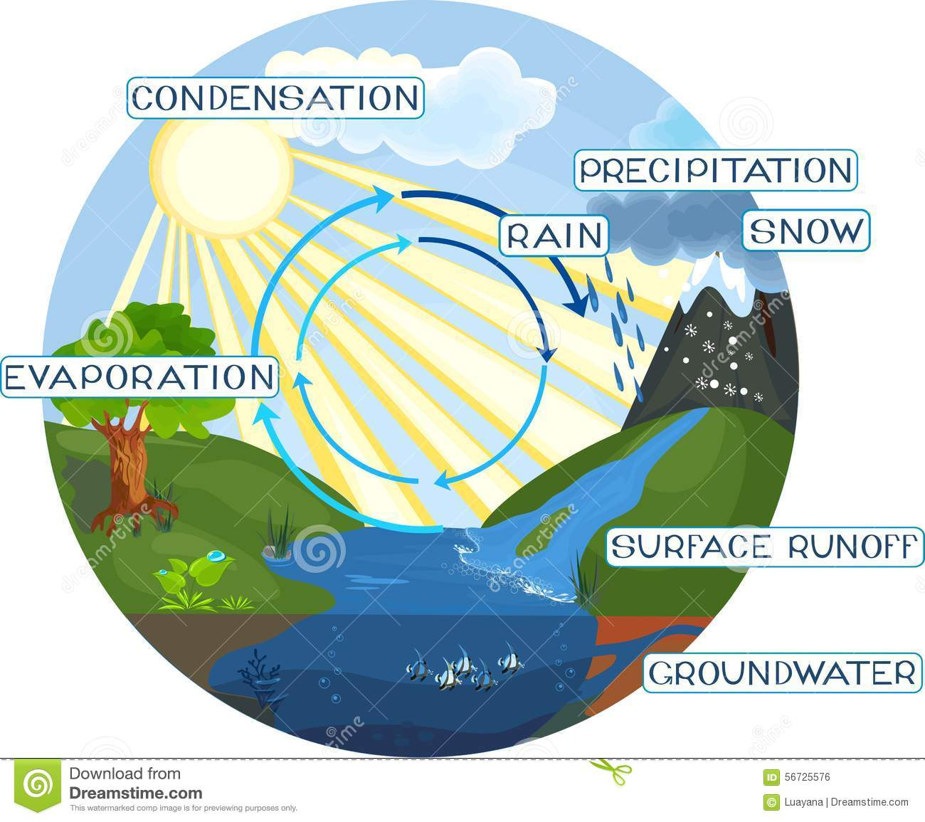 Images Of Water Cycle In Nature