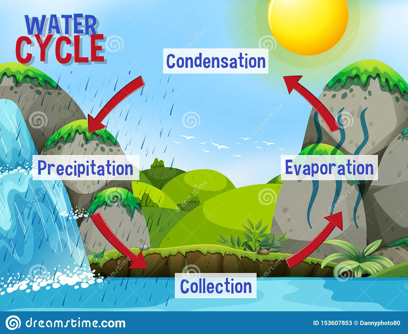 Water Cycle Process On Earth - Scientific Stock Vector ...