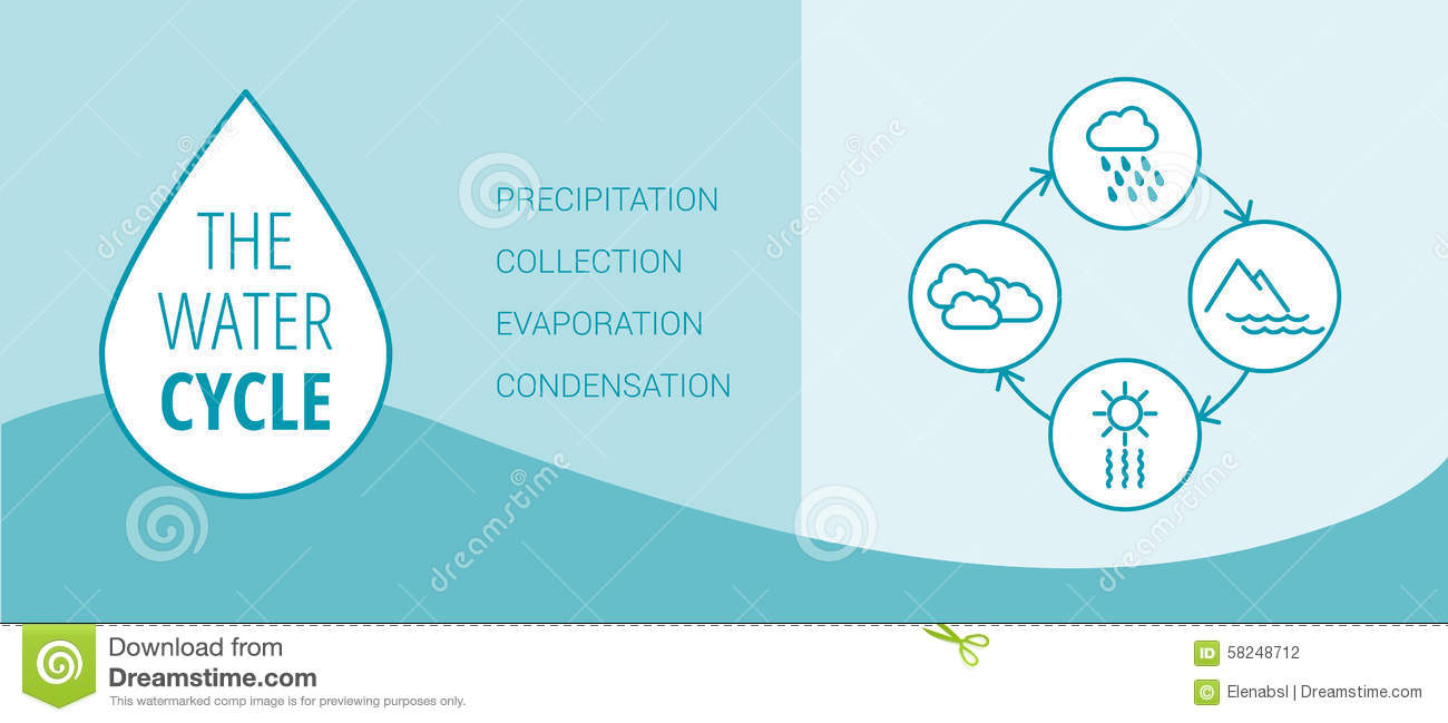 The water cycle vector diagram of precipitation, collection ...