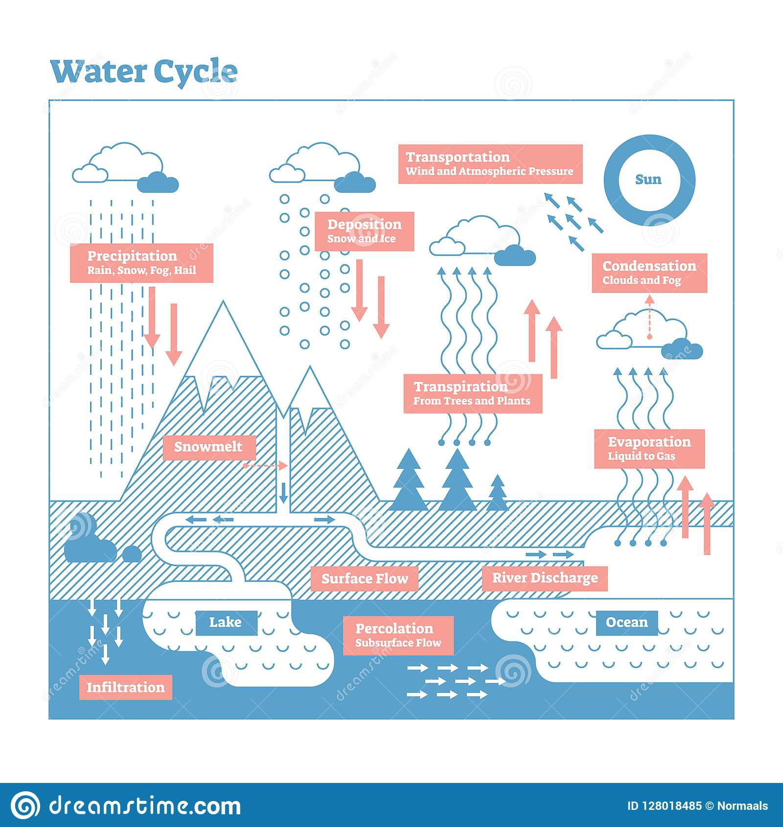 water cycle vector illustration diagram. geo science ecosystem