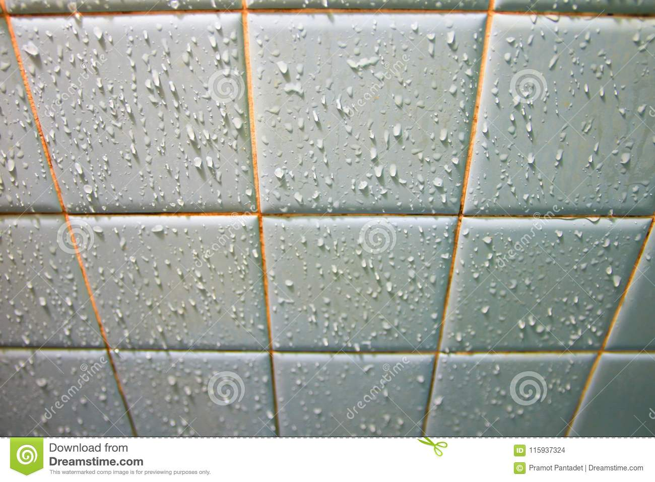 Water Drops On The Ceramic Tile Wall In Bathroom Select Focus With
