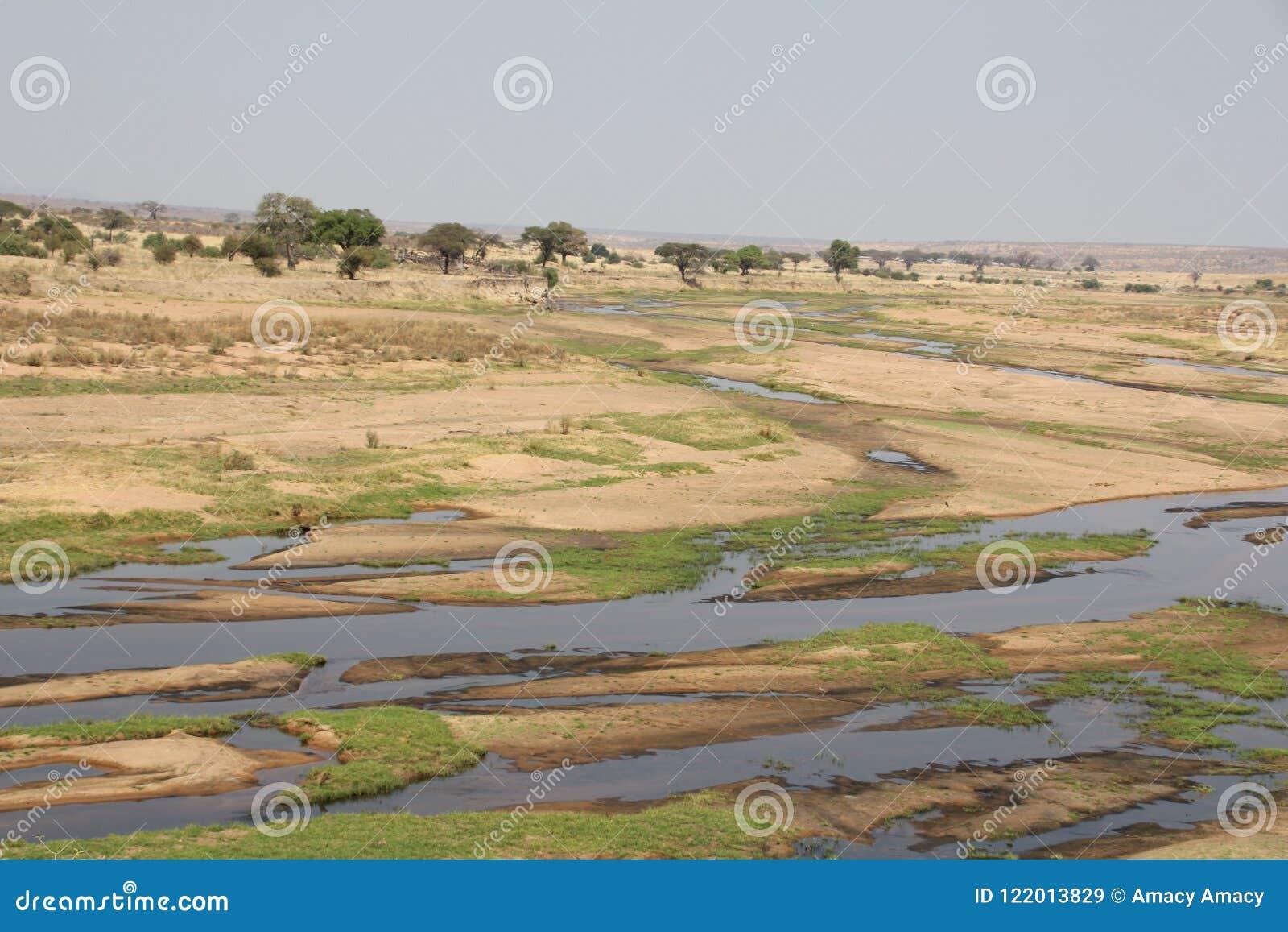 Beautifully view of ruaha river at ruaha national park