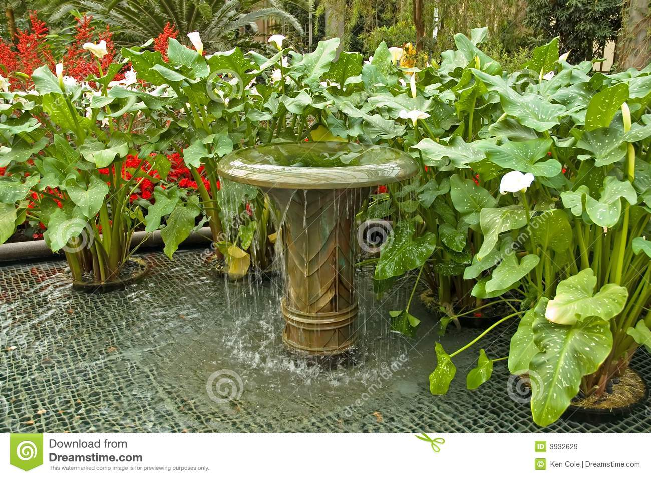 Water Fountain And Plants Stock Image Image Of Gardens 3932629