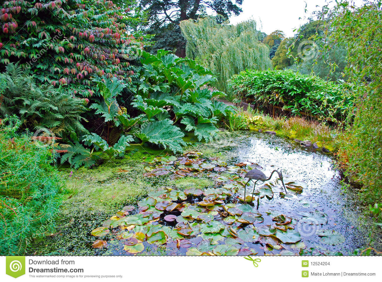 Water garden stock images image 12524204 for Artificial pond water