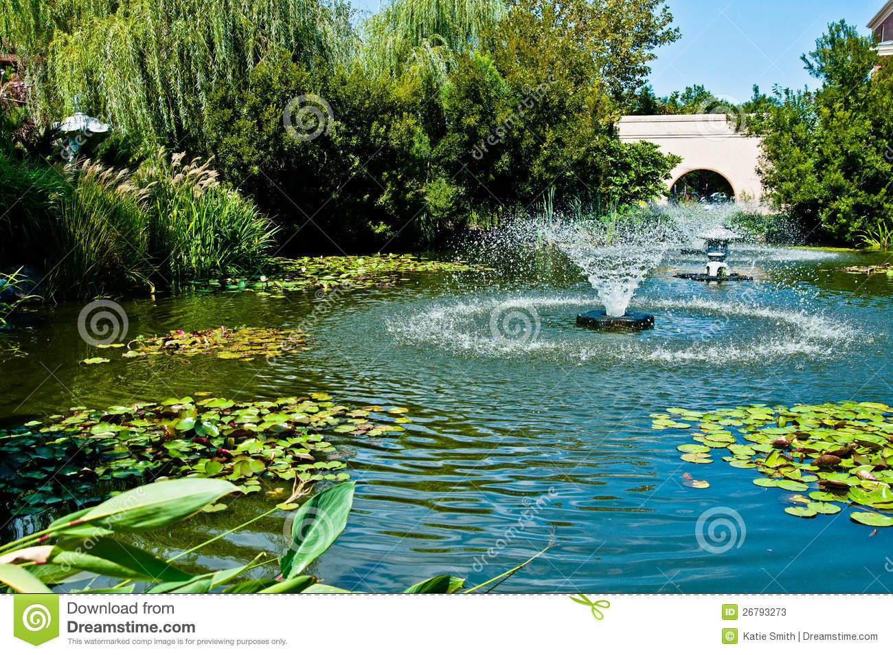 Water garden stock image image of city water plant for The water garden