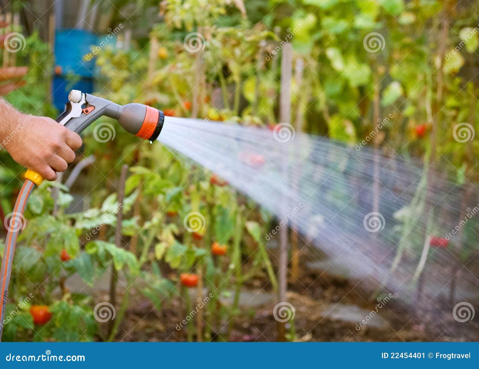 Water gevende tuin