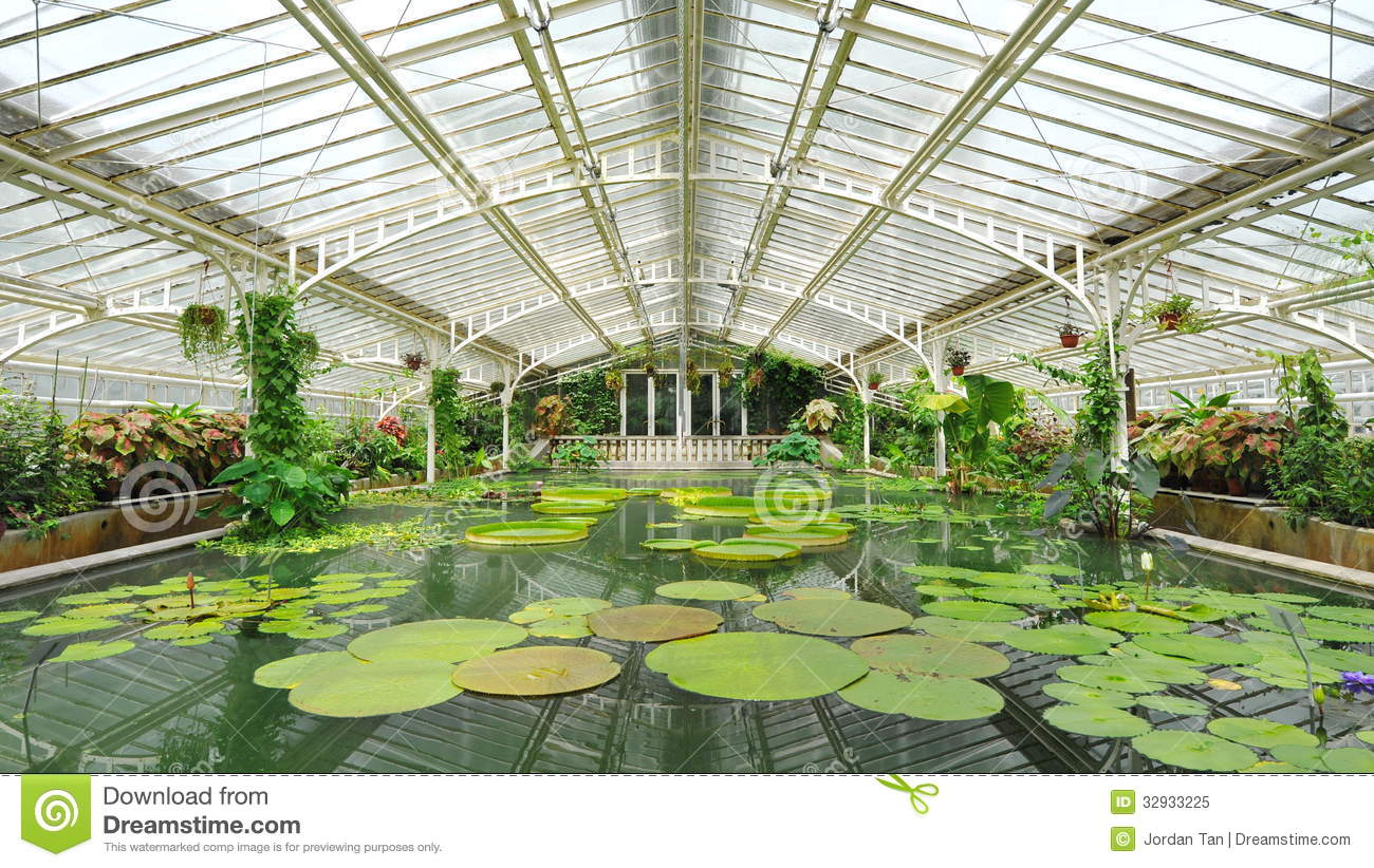 Water lilies and pond in victoria glasshouse of munich for Botanical garden timing