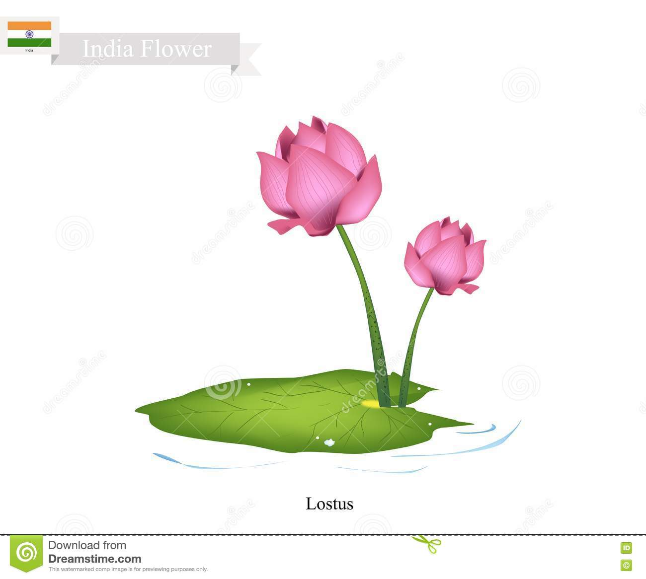 National Of Flower Of India Pictures Kanotix Lxde Wallpaper