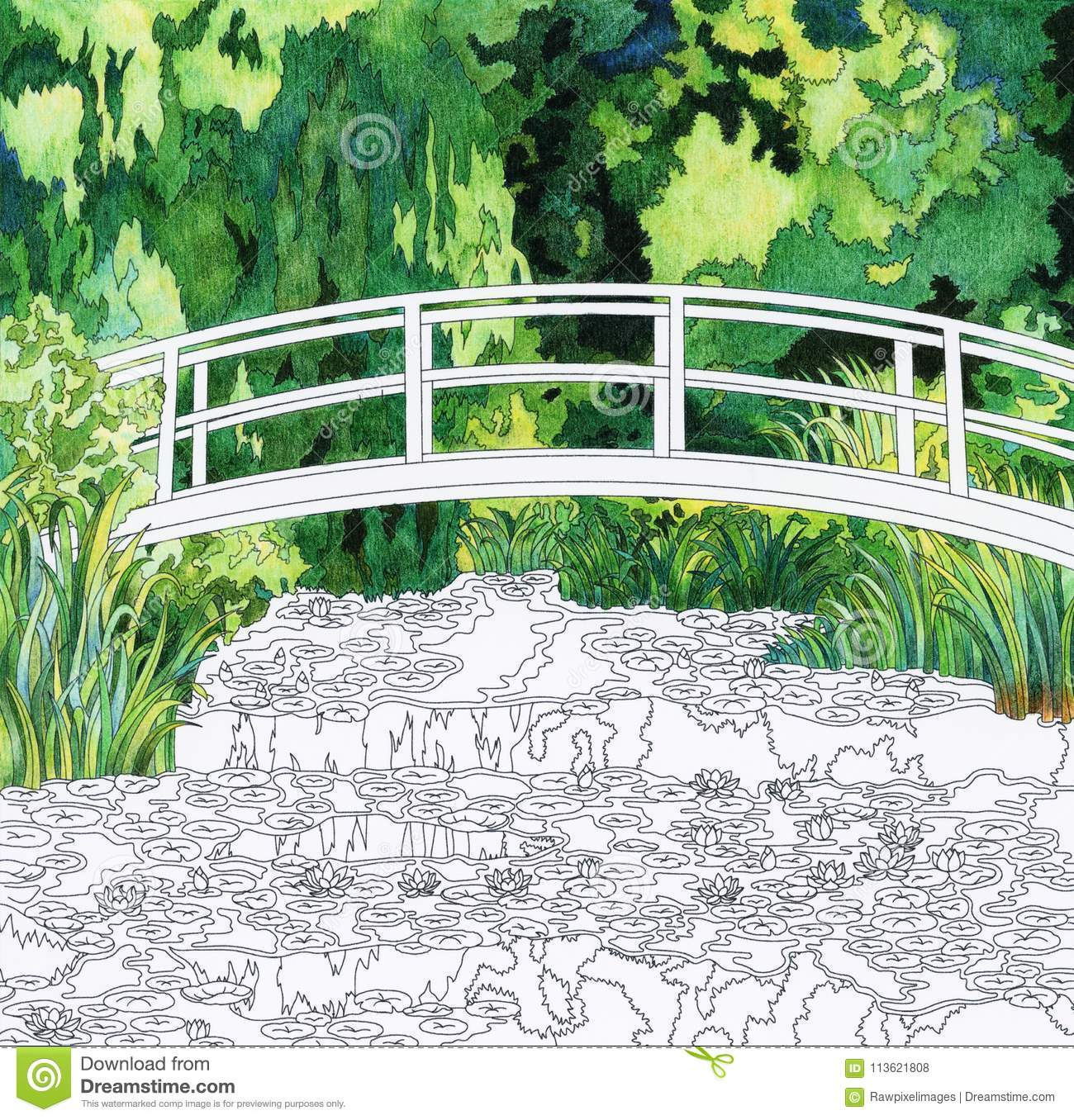 The Water Lily Pond 1899 By Claude Monet: Adult Coloring Page Stock ...