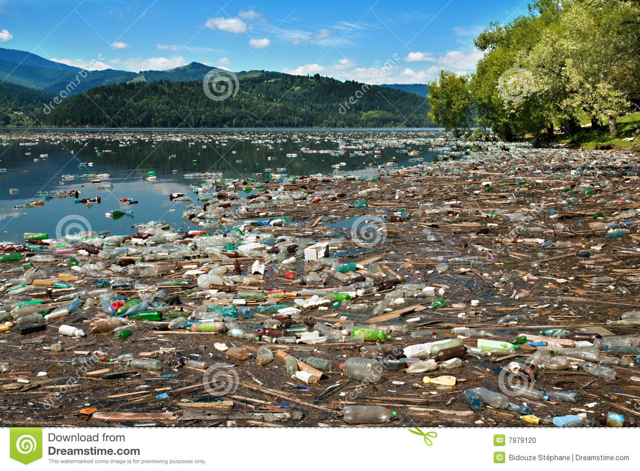 Tons of plastic bottles and other waste floating on beautiful lake.