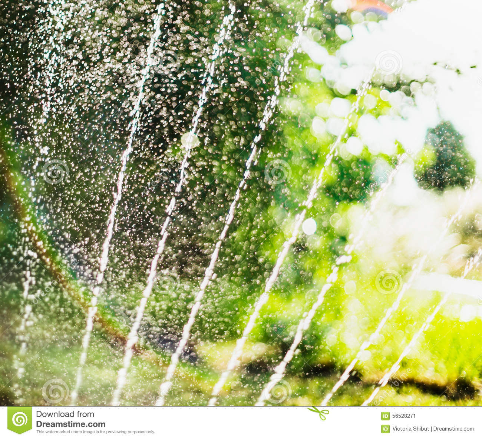 Backyard Summer Background :  Summer Garden With Sprinkler On Blurred Tree Foliage Background Stock
