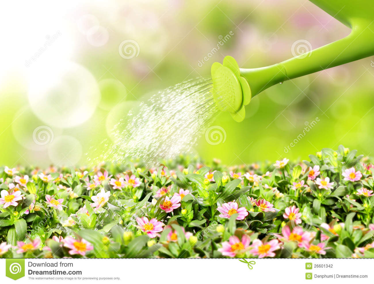 Water pouring flower